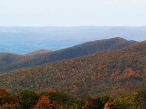 Not farmland in the valley, just the Shenandoah Mountains in the fall.